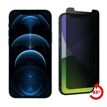 Cellhelmet Privacy Tempered Glass Screen Protector for Apple iPhone 12 Pro Max
